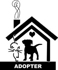 Adopter plutôt qu'acheter un animal